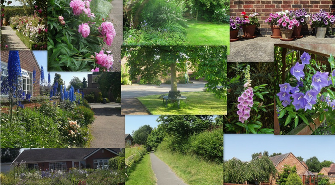 Willoughby's Open Gardens Returns!